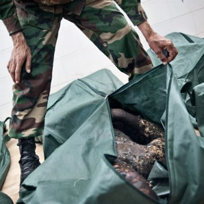 A victim of the clashes is placed into a body bag at the morgue in Benghazi.