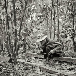 A farmer transforms lianas into strings for many purposes.