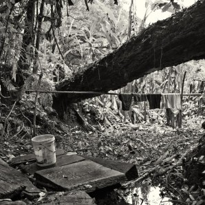 A little creek near the plantation is used for washing and as well as a source of drinking water.